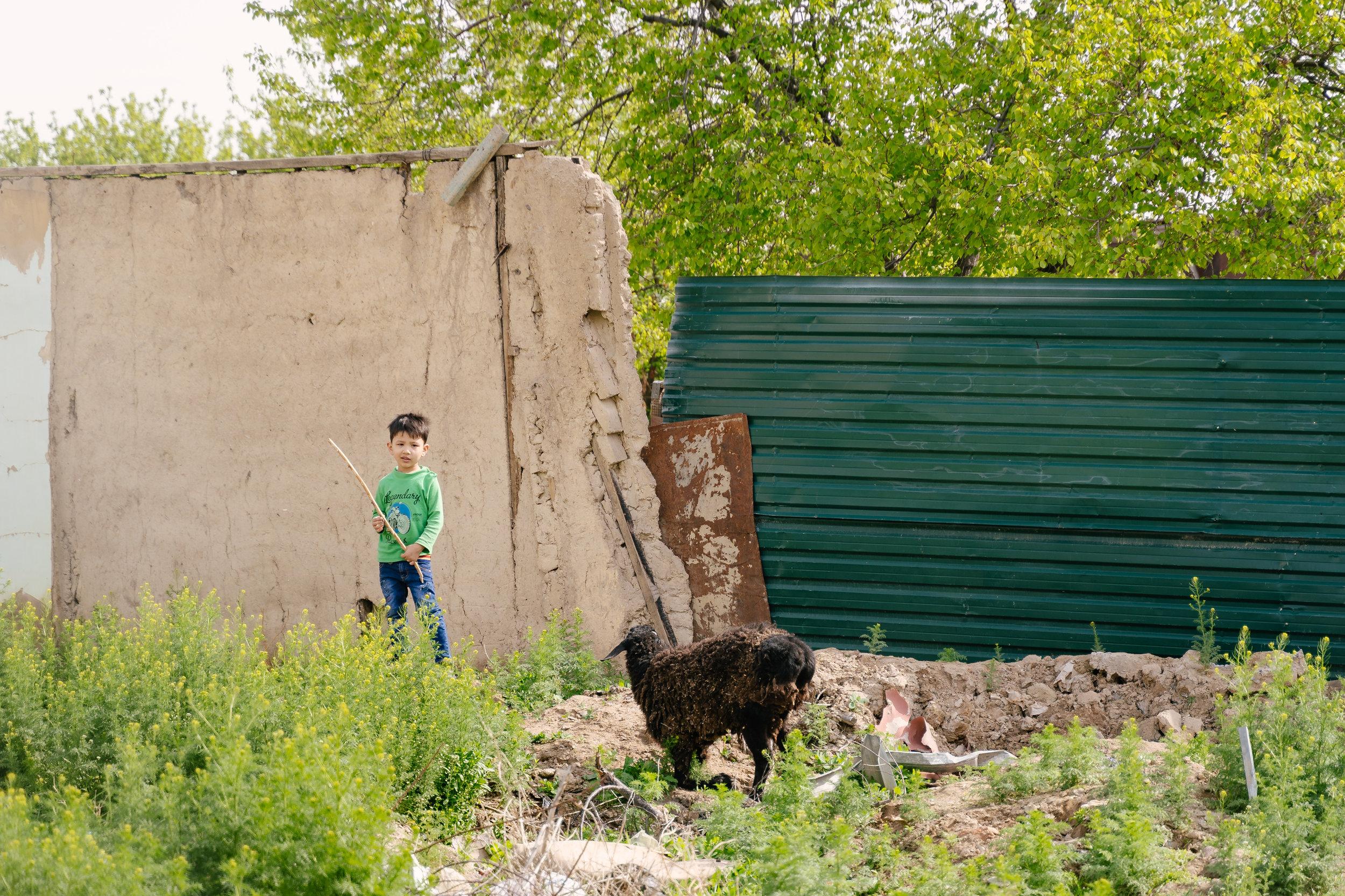 Tashkent, Uzbekistan.