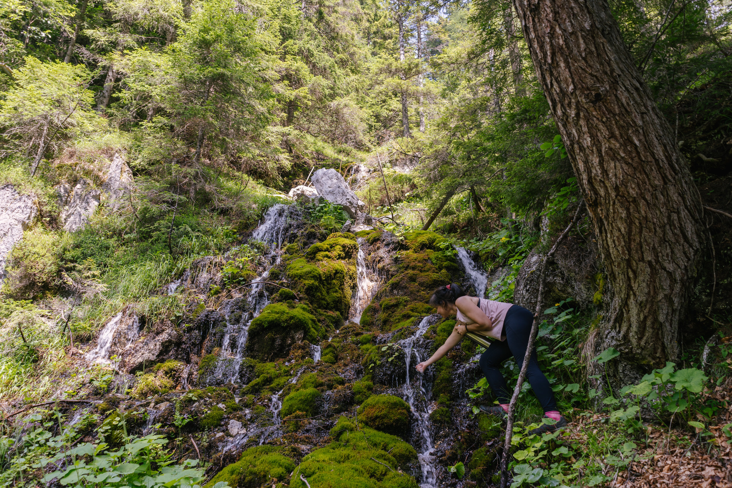 Cold fresh water of mountain streams is the best.