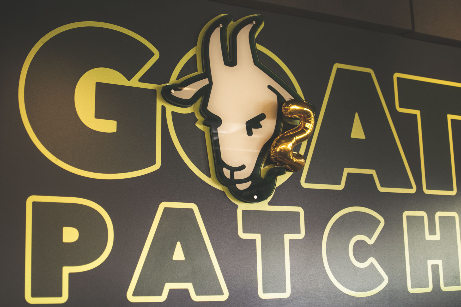 Goat-Patch-Turns-Two-10.JPG