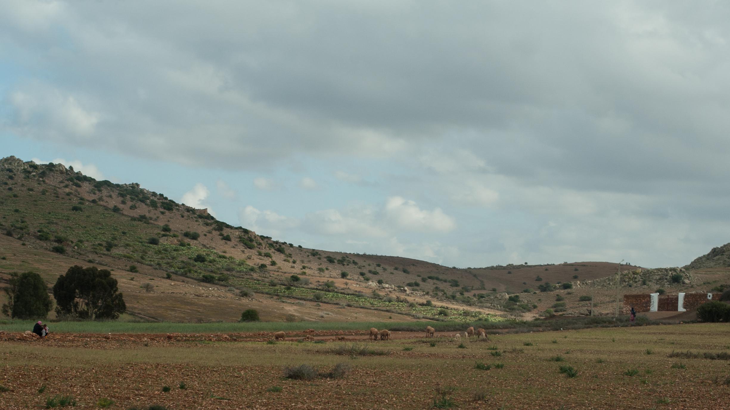 LB3-Morocco-0-day-0252.jpg