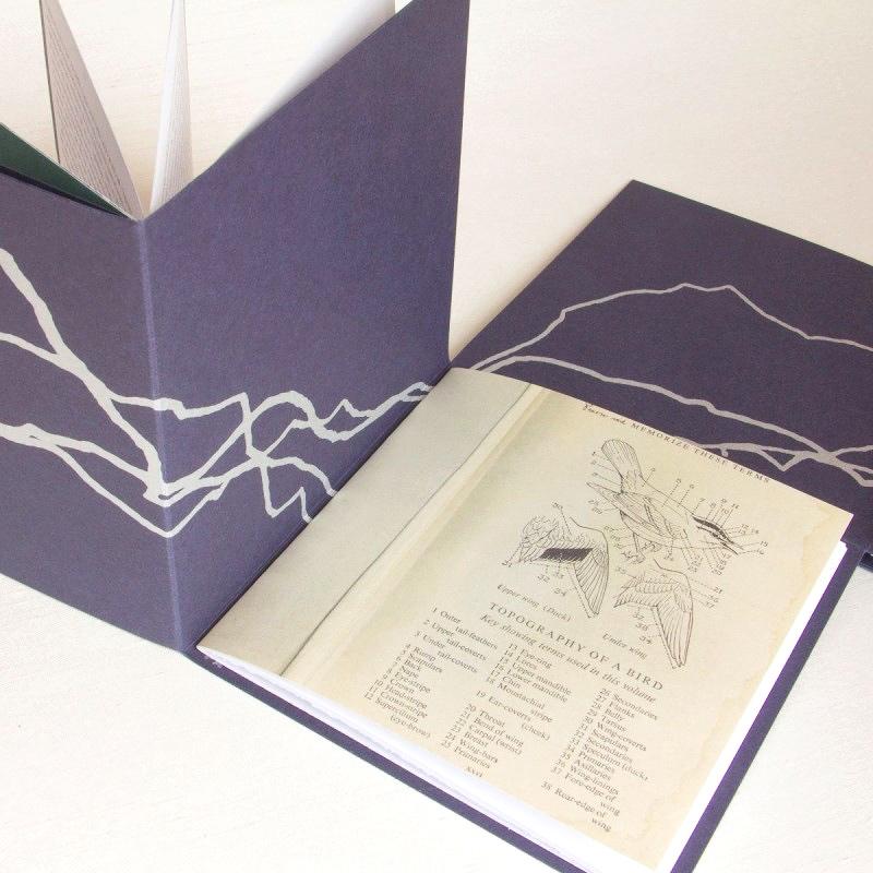 Unusual book structure - alternative accordion book
