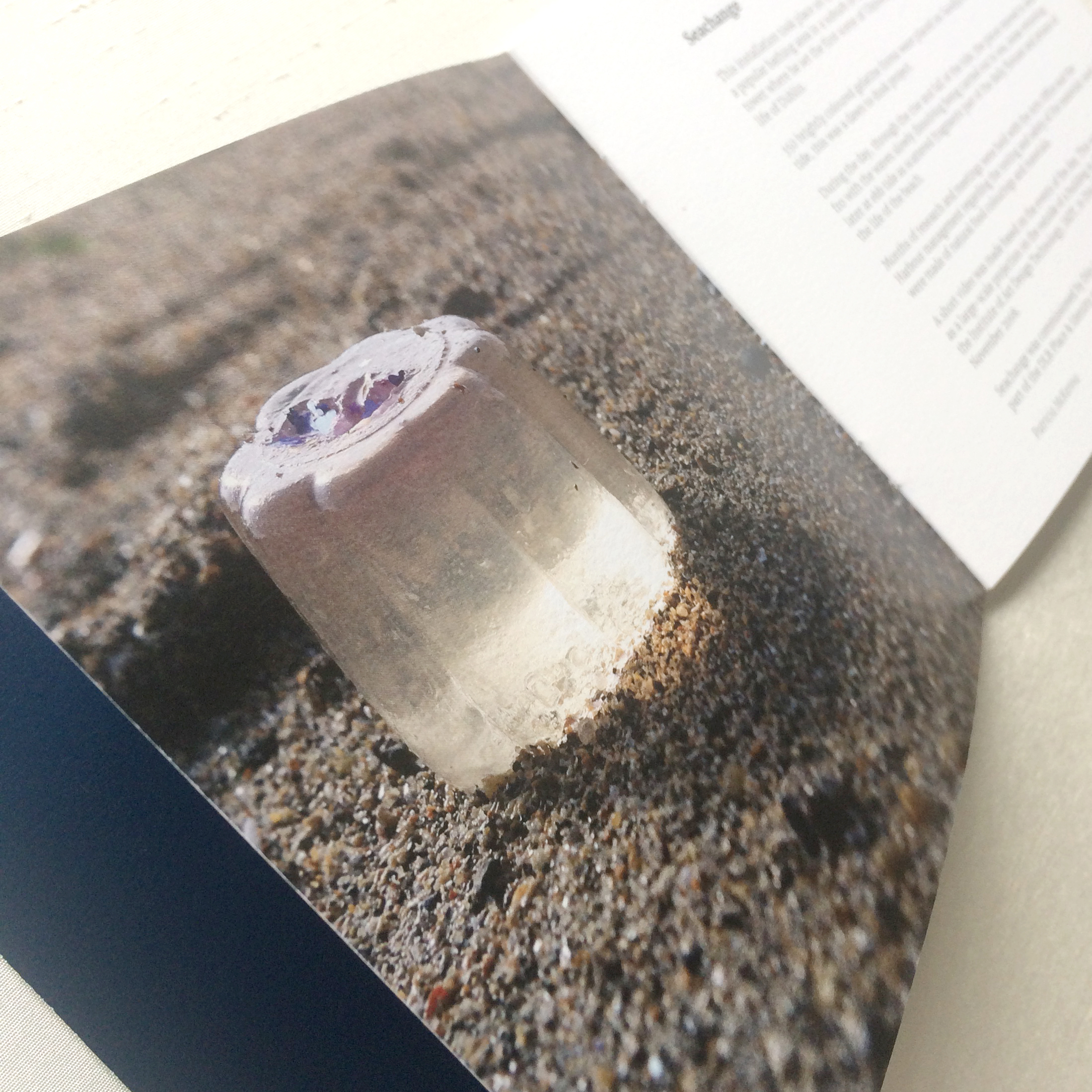 Photo of jelly on sand inside artist catalogue