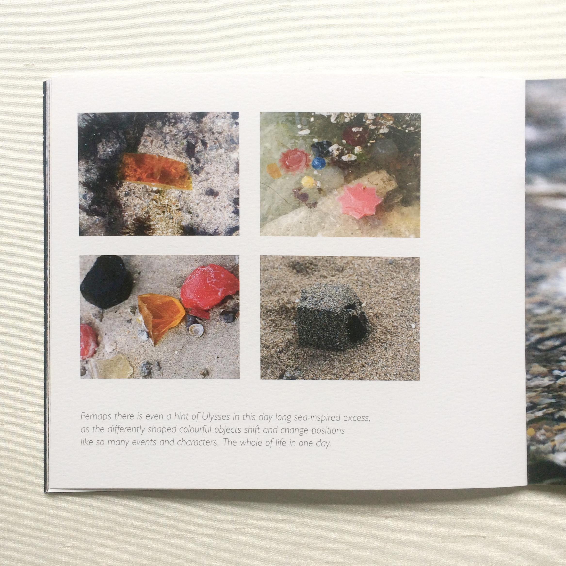 Graphic design artist catalogue Patricia McKenna - jelly on sandy beach installation