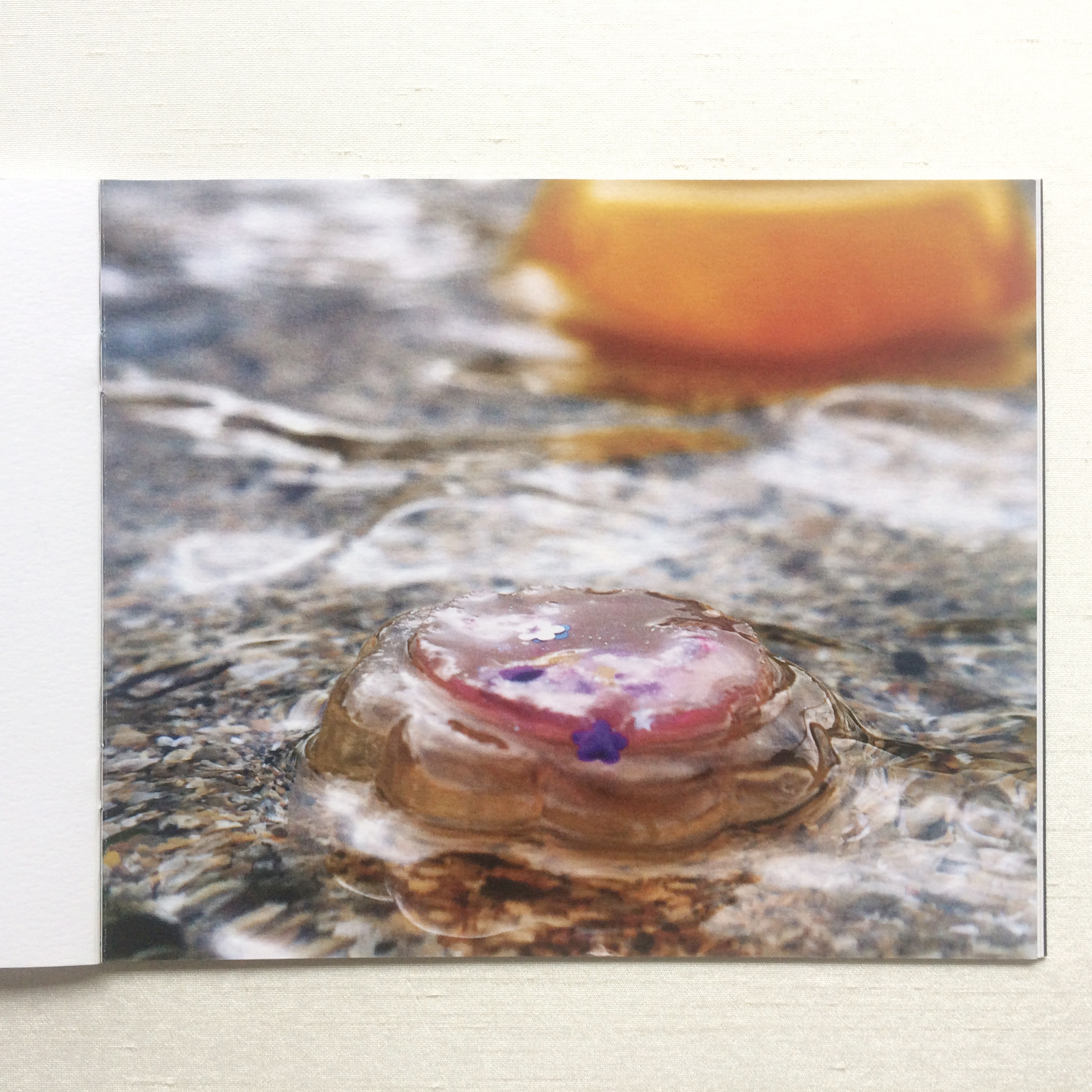 Jelly floating in water - art catalogue Patricia McKenna Irish artist
