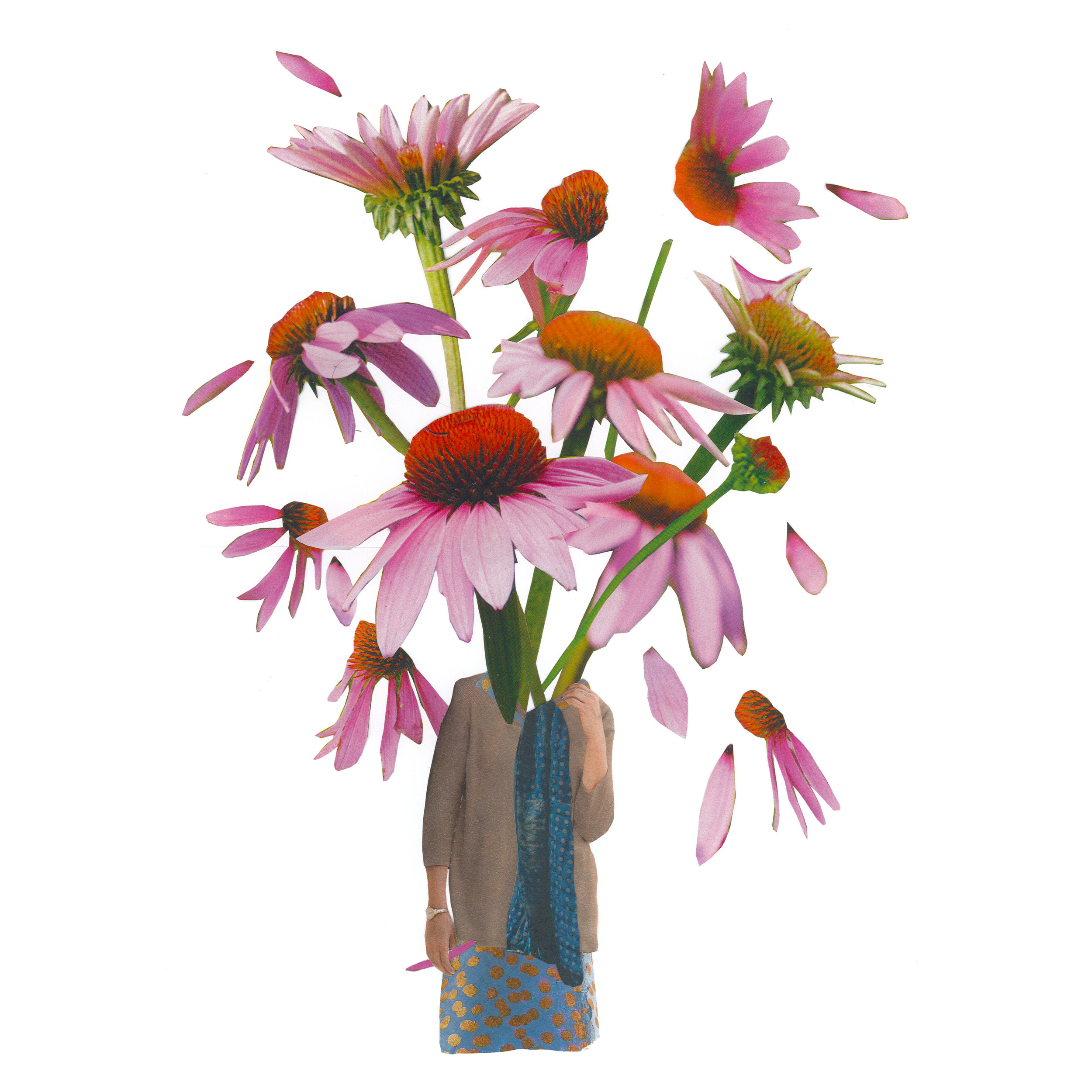 pink coneflower 11x11.jpg