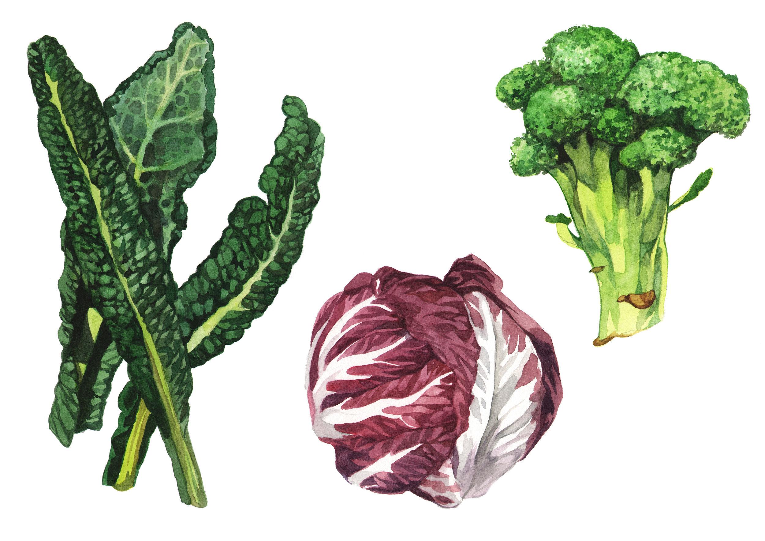 cabbage-kale-broccoli.jpg