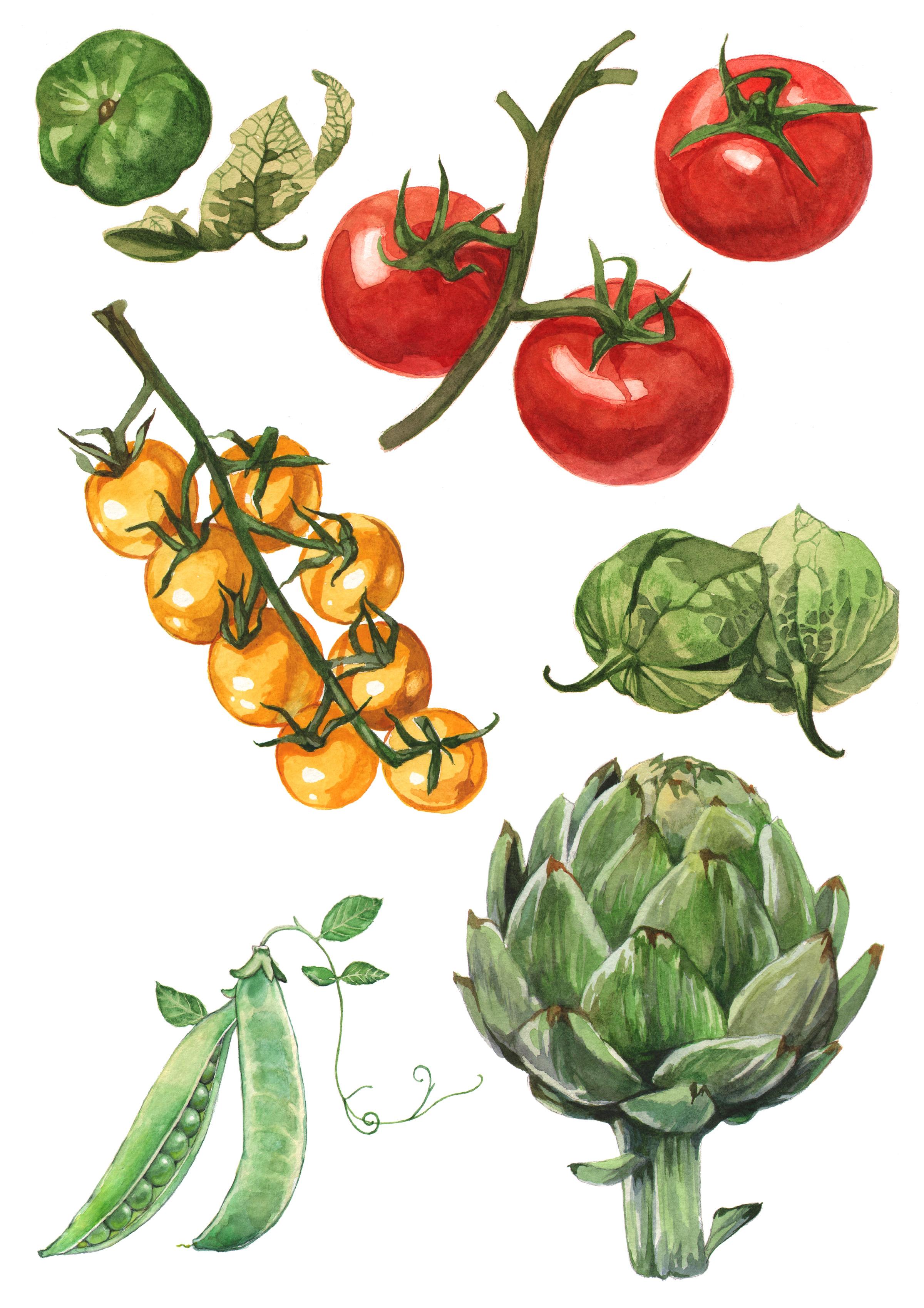 tomatos-artichoke-peas.jpg