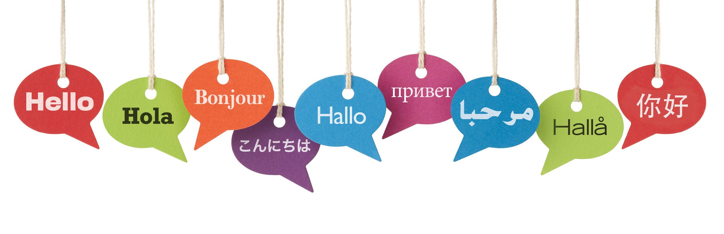 english-literacy-development-rev.jpg