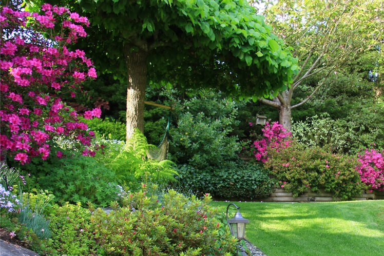 Why Your Diy Backyard Landscaping Will Look Like Crap Plus The