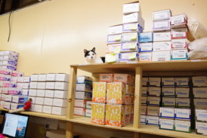 The inventory room supervisor observing operations.
