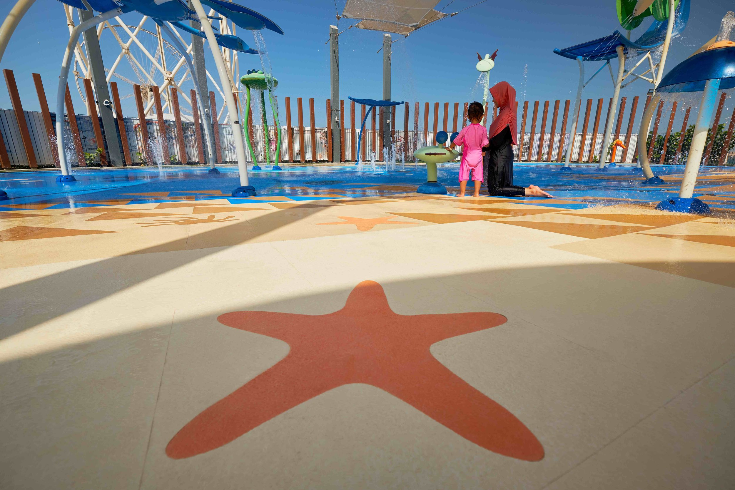 Jumeirah Beach starfish.jpg