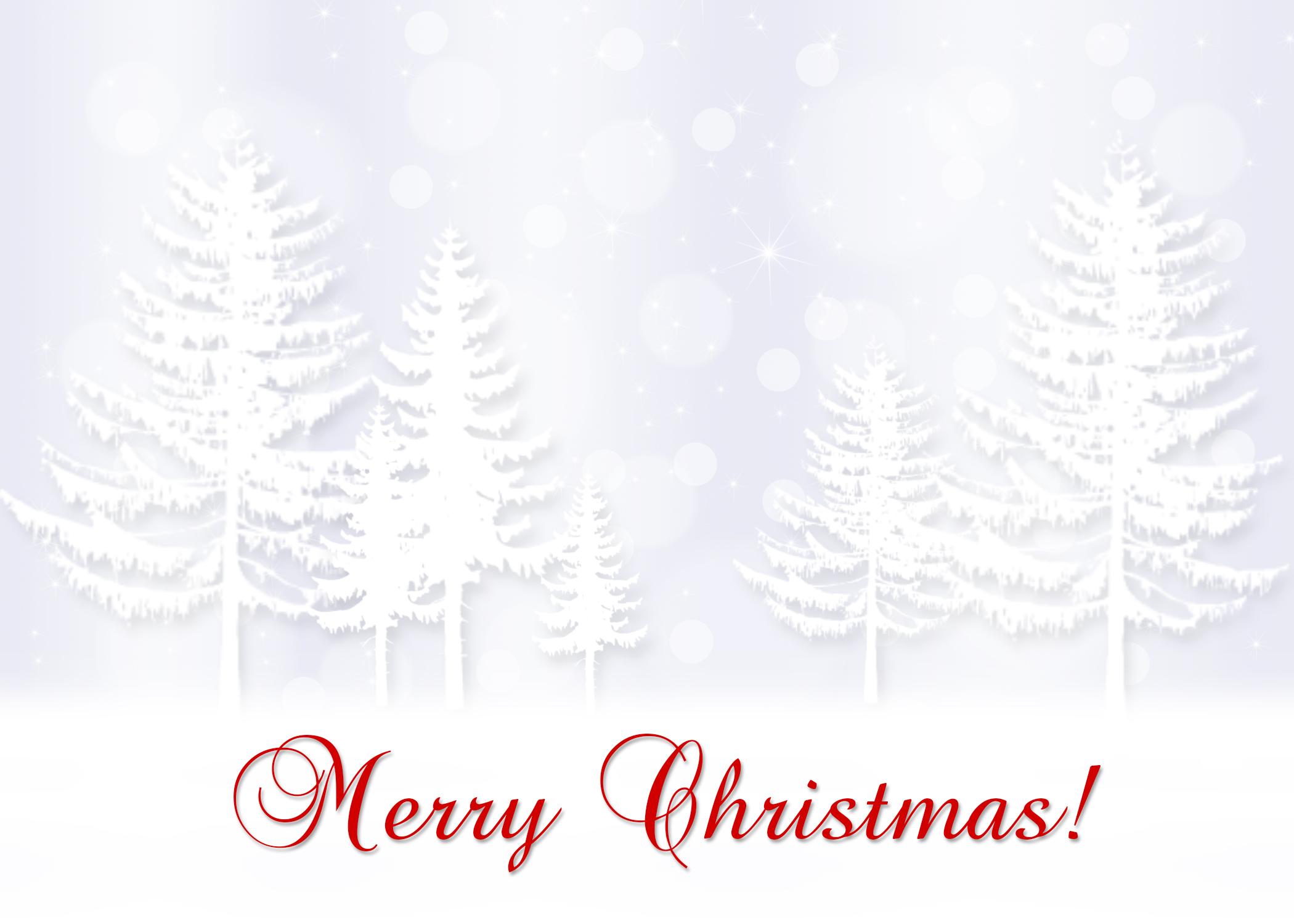 ChristmasTrees2013.jpg