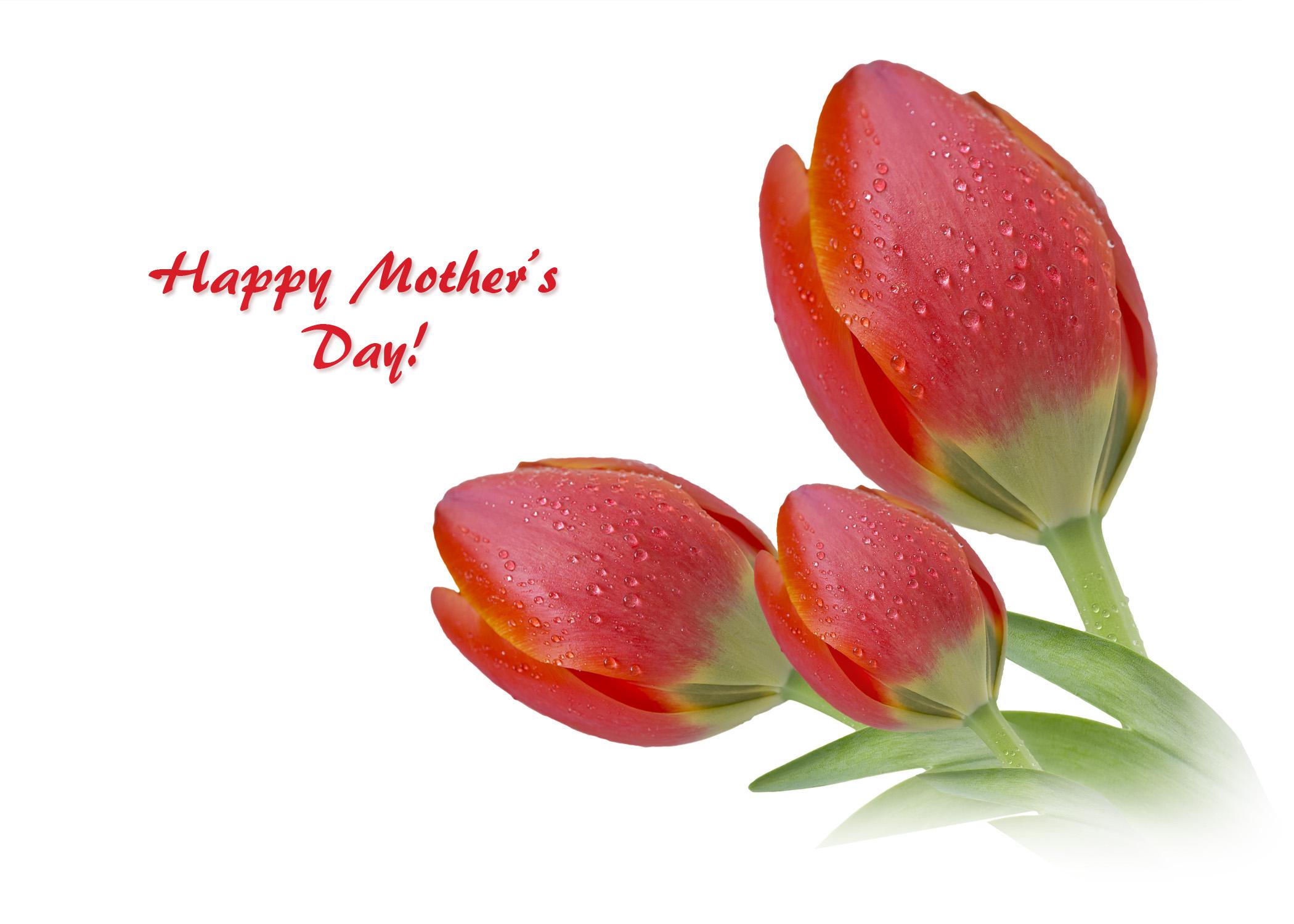 HappyMothersDay_tulips.jpg