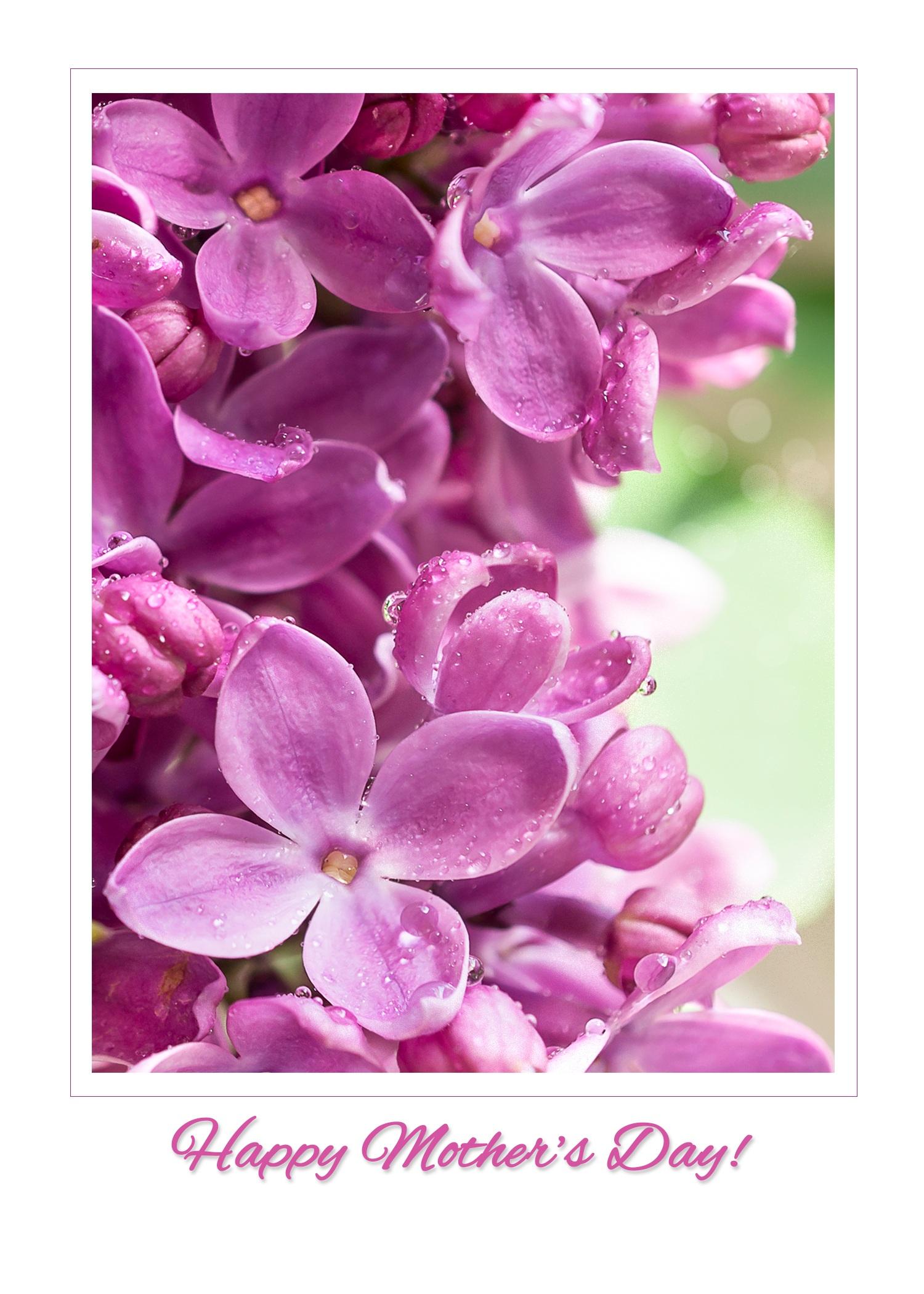 Lilac_vertical_frame_MothersDay.jpg