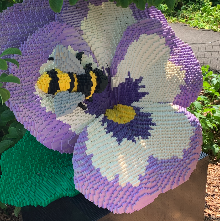 Violet Pansy & Bee