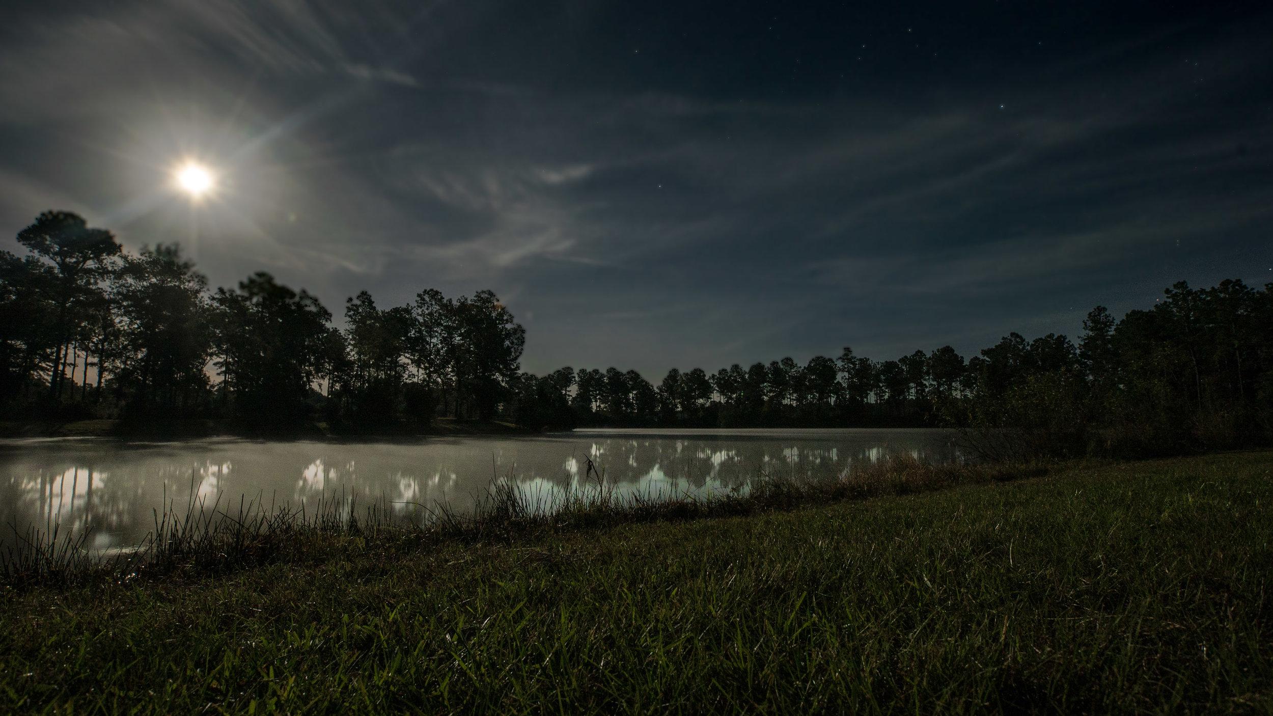 Palmetto Lake-3.jpg