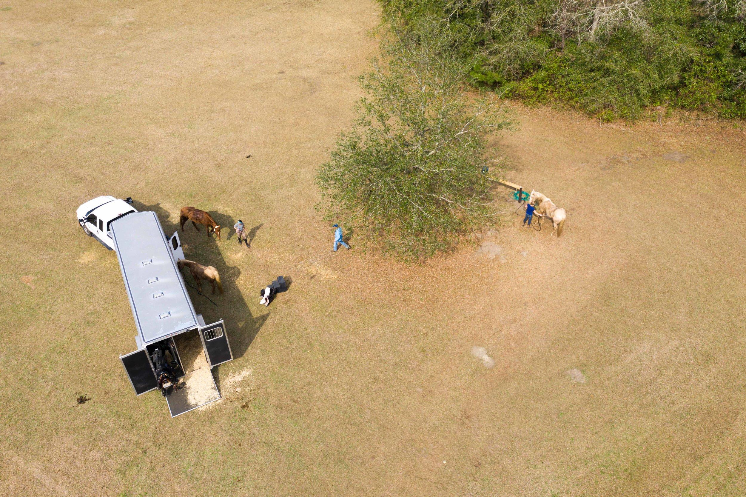 Bailey's Field.jpg