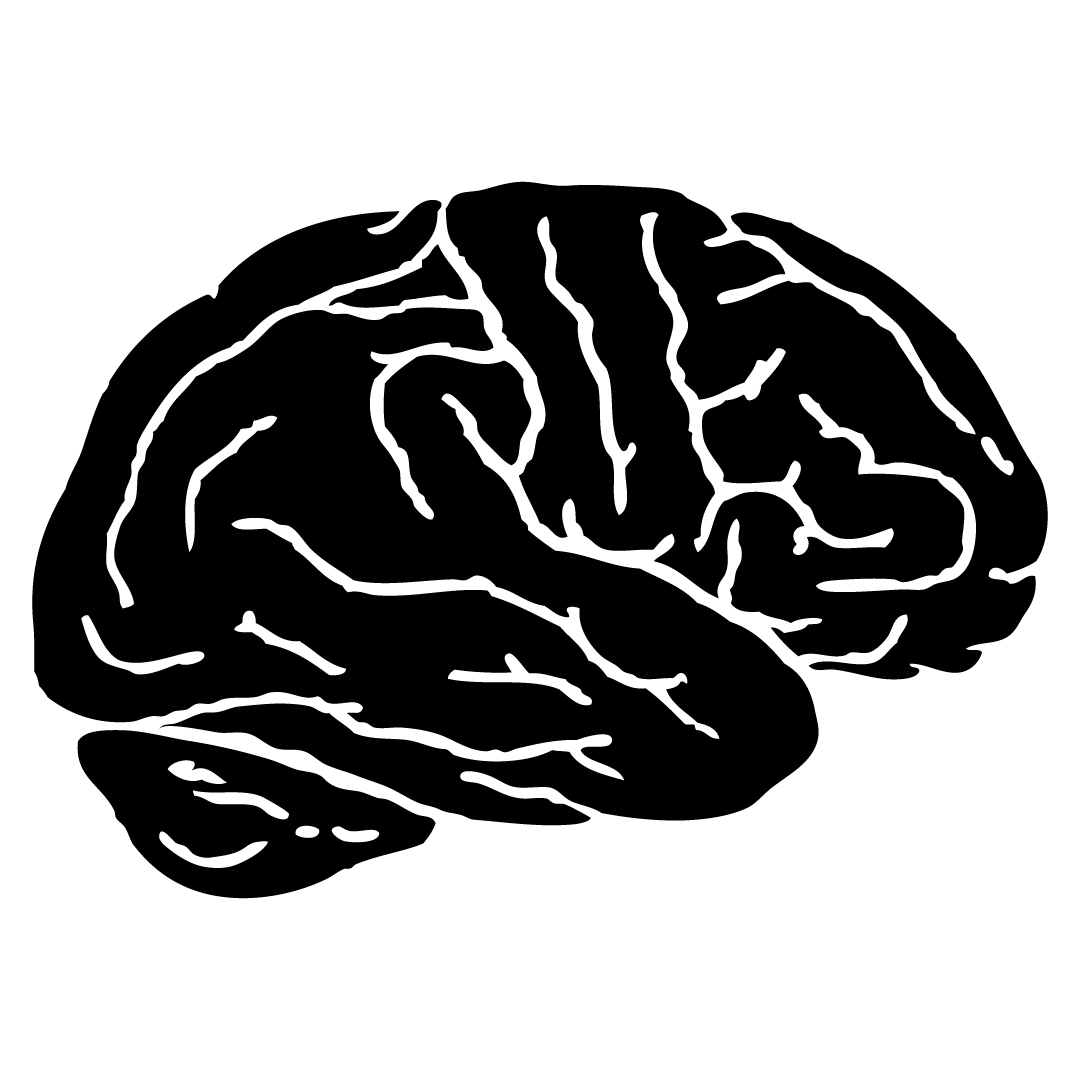 brain-01.jpg