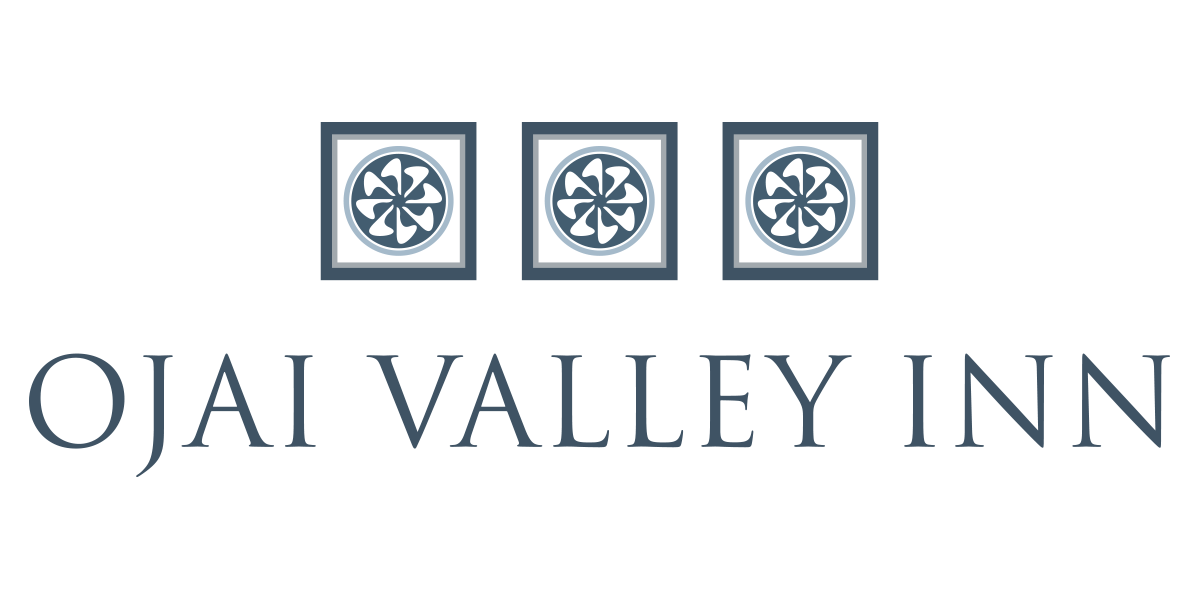 OVI_New_Logo_2017-color (3).png