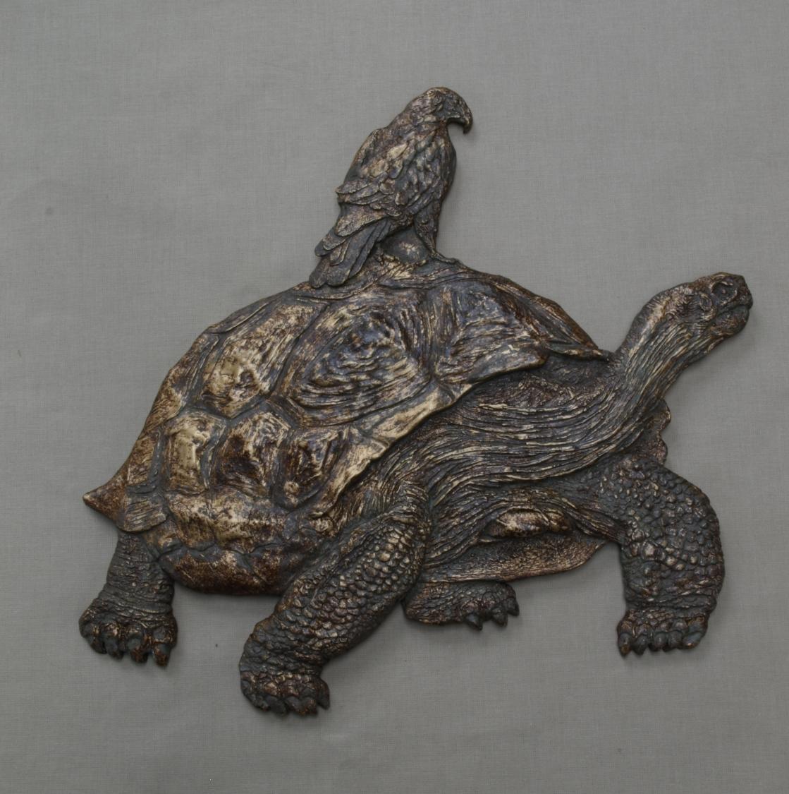 Galapagos Tortoise & Galapagos Hawk