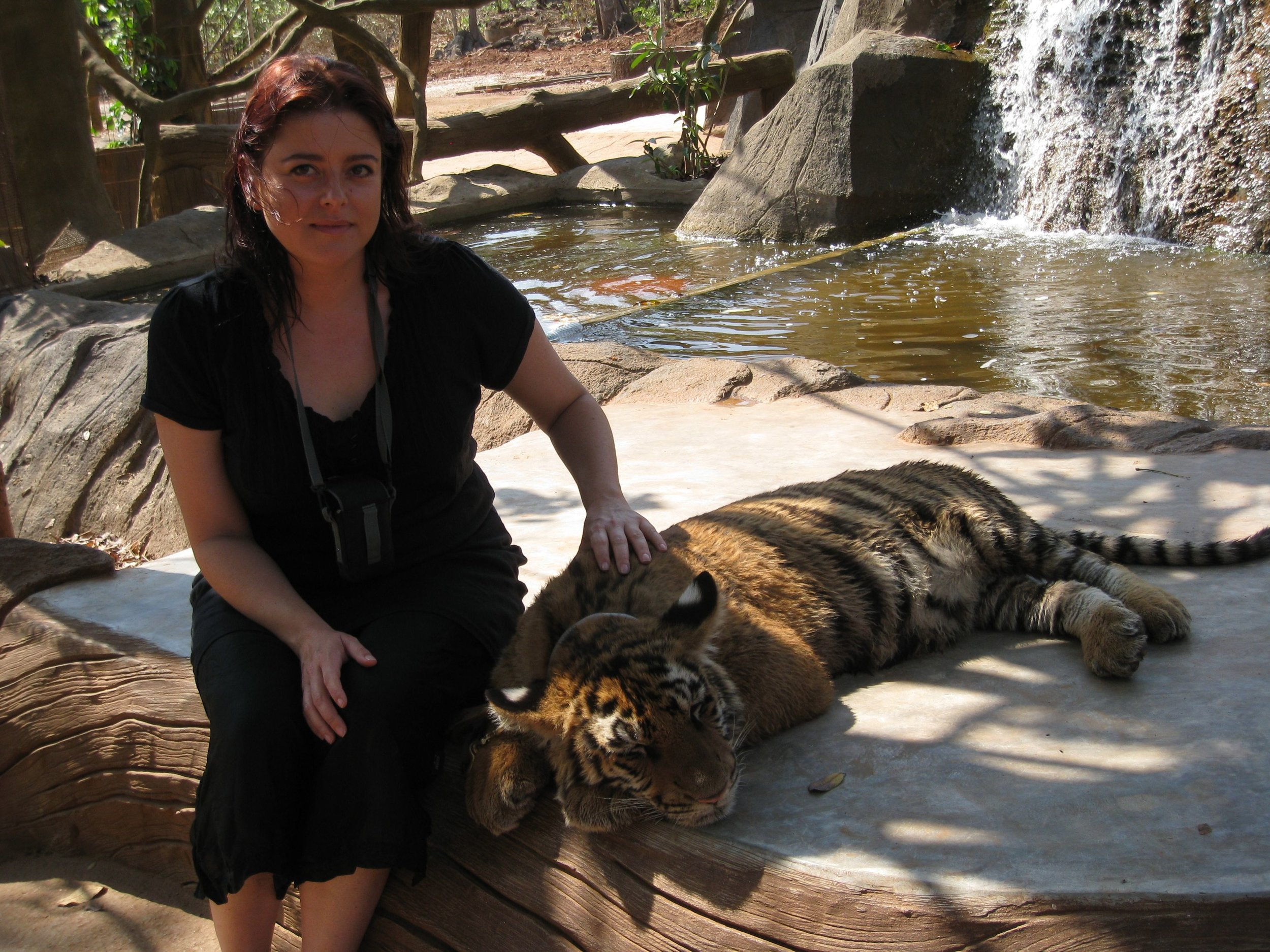 Peta at Tiger Temple in Thailand.jpg
