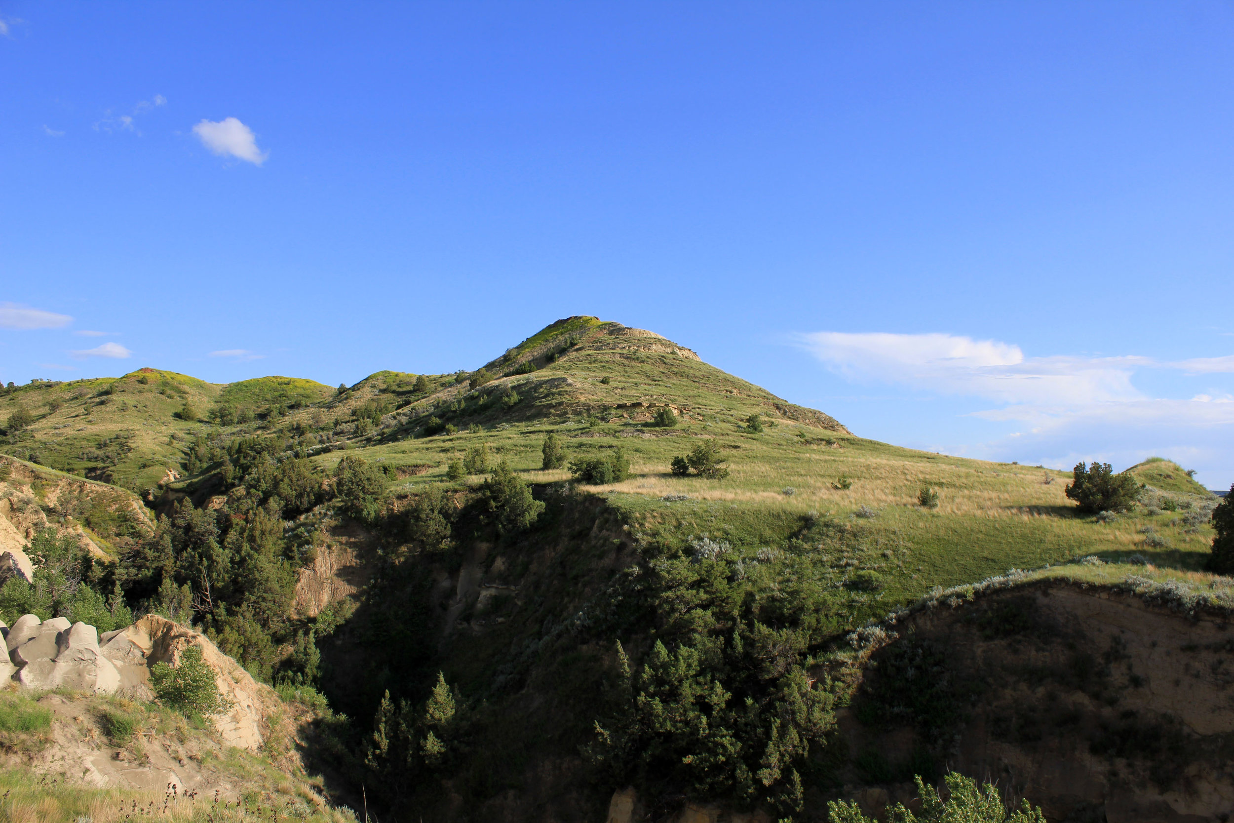 Mountain and Hill Tops - Cremated remains contain a lot of phosphates which can upset the local soil ecology. Plant species found in remote areas on impoverished soils are often very sensitive to change. So too many sets of ashes in the same place may suppress the wild flora and encourage aggressive, dominant species like nettles.