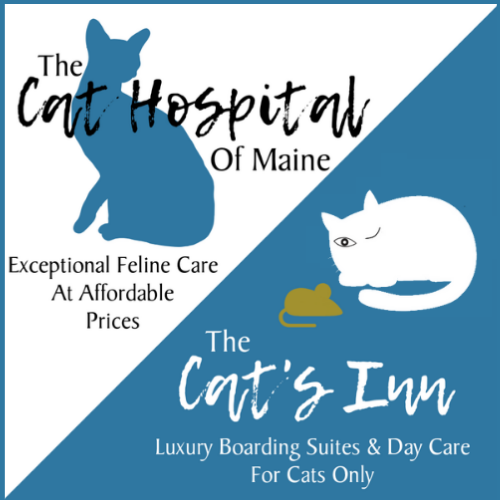 maine feline veterinary clinic cat boarding kennels.png