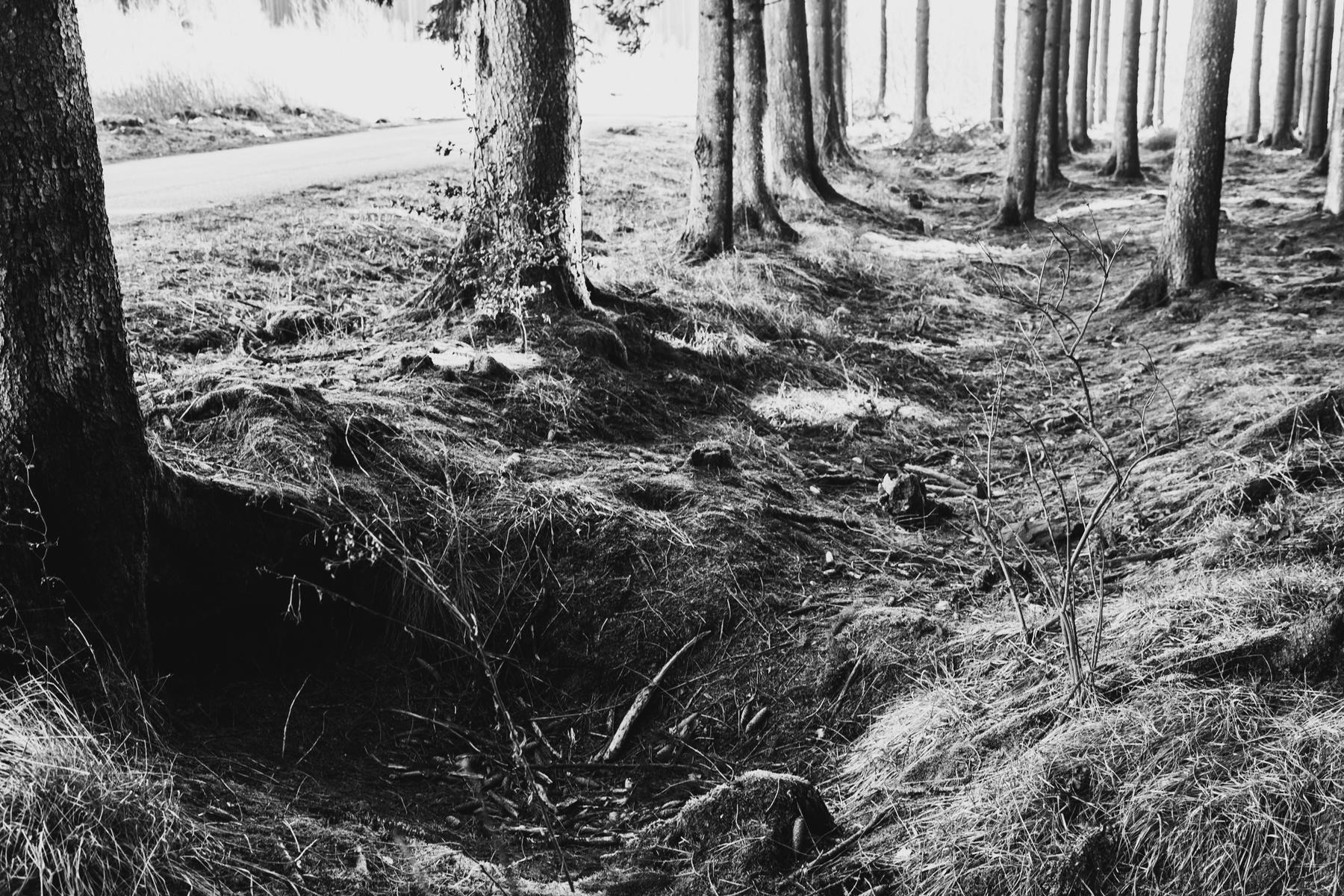 Bastogne, Bios Jacques.