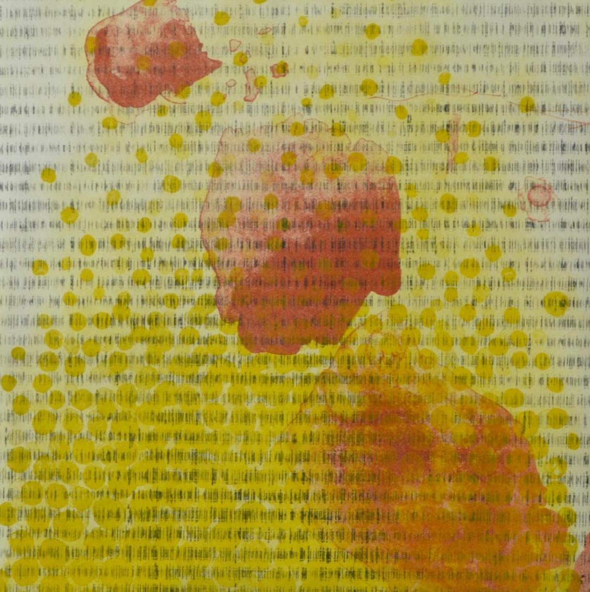 Copy of Pota 2016 | intaglio lithograph | 22x30