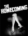 the homecoming poster 100x128.png