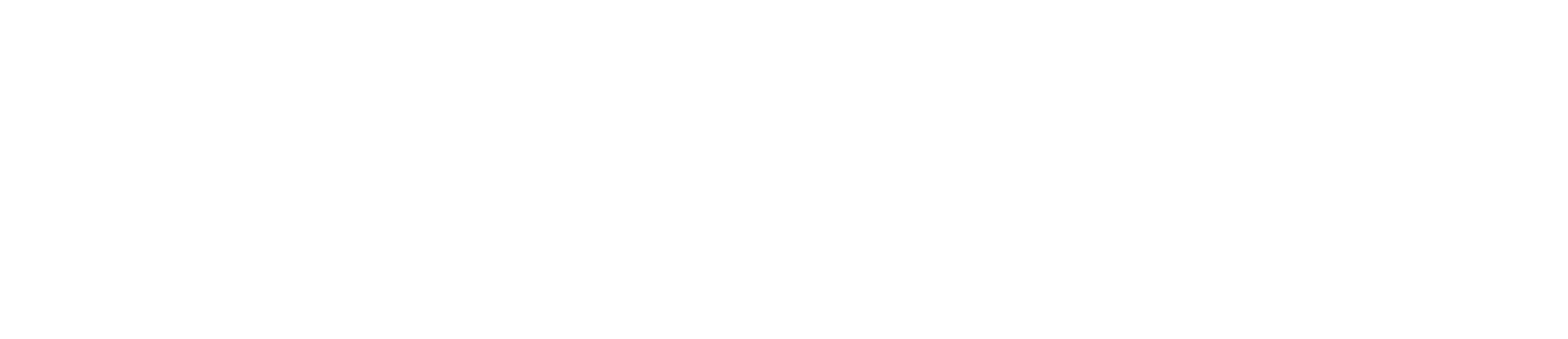 Peter Marco Logo2 - White.png