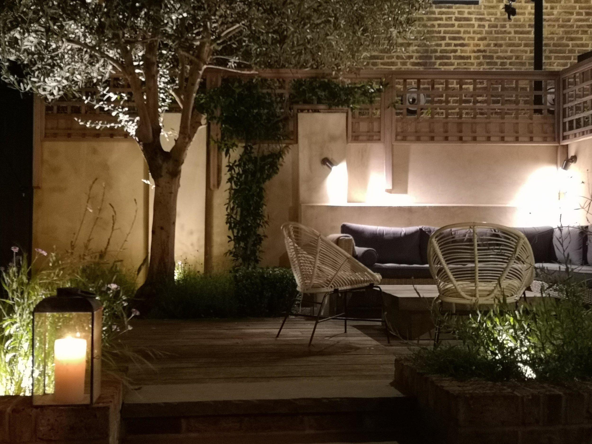 Back_garden_night.jpg