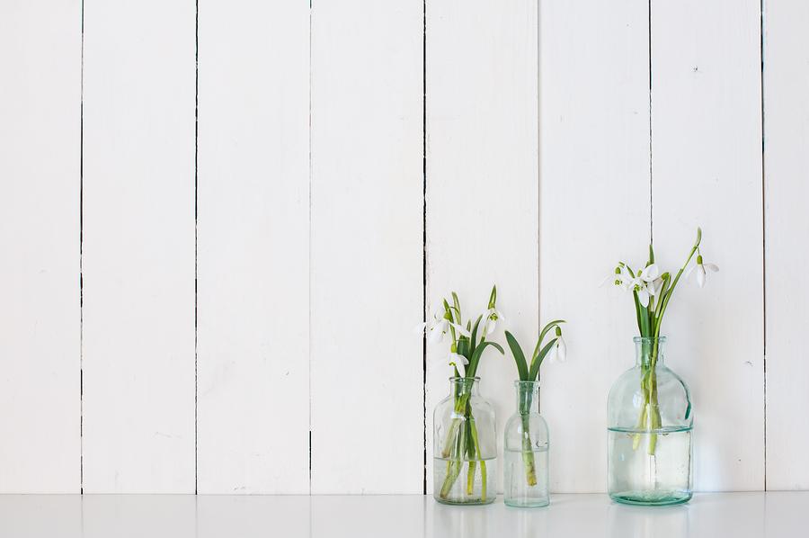 bigstock-spring-flowers-84457472 copy.jpg