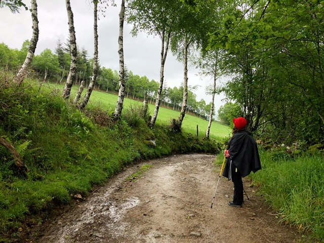 A Magical Journey - The first few days of walking were amazing. It was like walking through a painting and there were moments, I actually felt like little gnomes were going to come out and greet me because it was so magical.