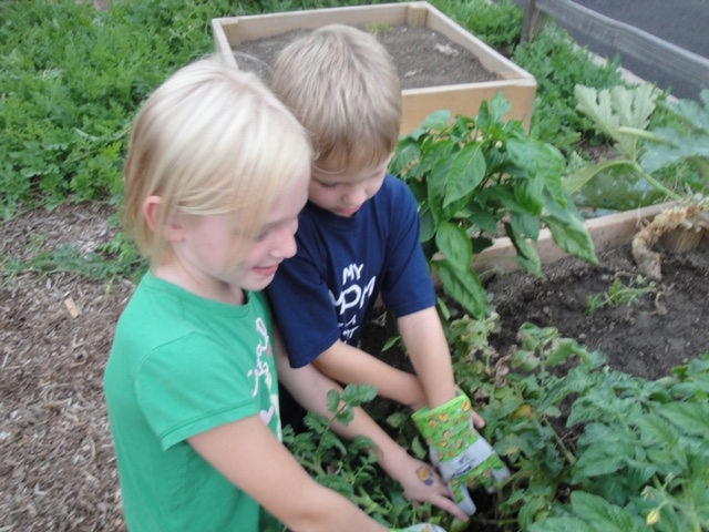 - I was looking to re-create my experience from the children's museum, so I joined the PTA, applied for a grant and worked with a co-chair to start a school garden at my son's elementary school.My experience working on traveling exhibits with the children's museum, inspired me to bring play into our garden.