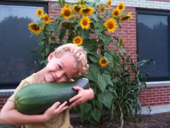 - My thoughts of a school garden, turned into a flourishing and successful school garden.