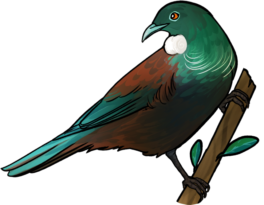tui2.png