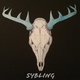 2. Sybling_EP.jpg