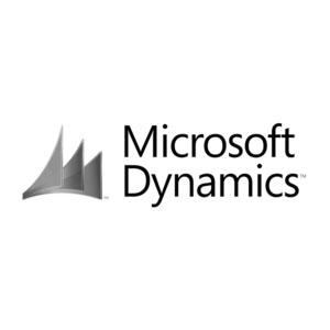MS Dynamics.jpg