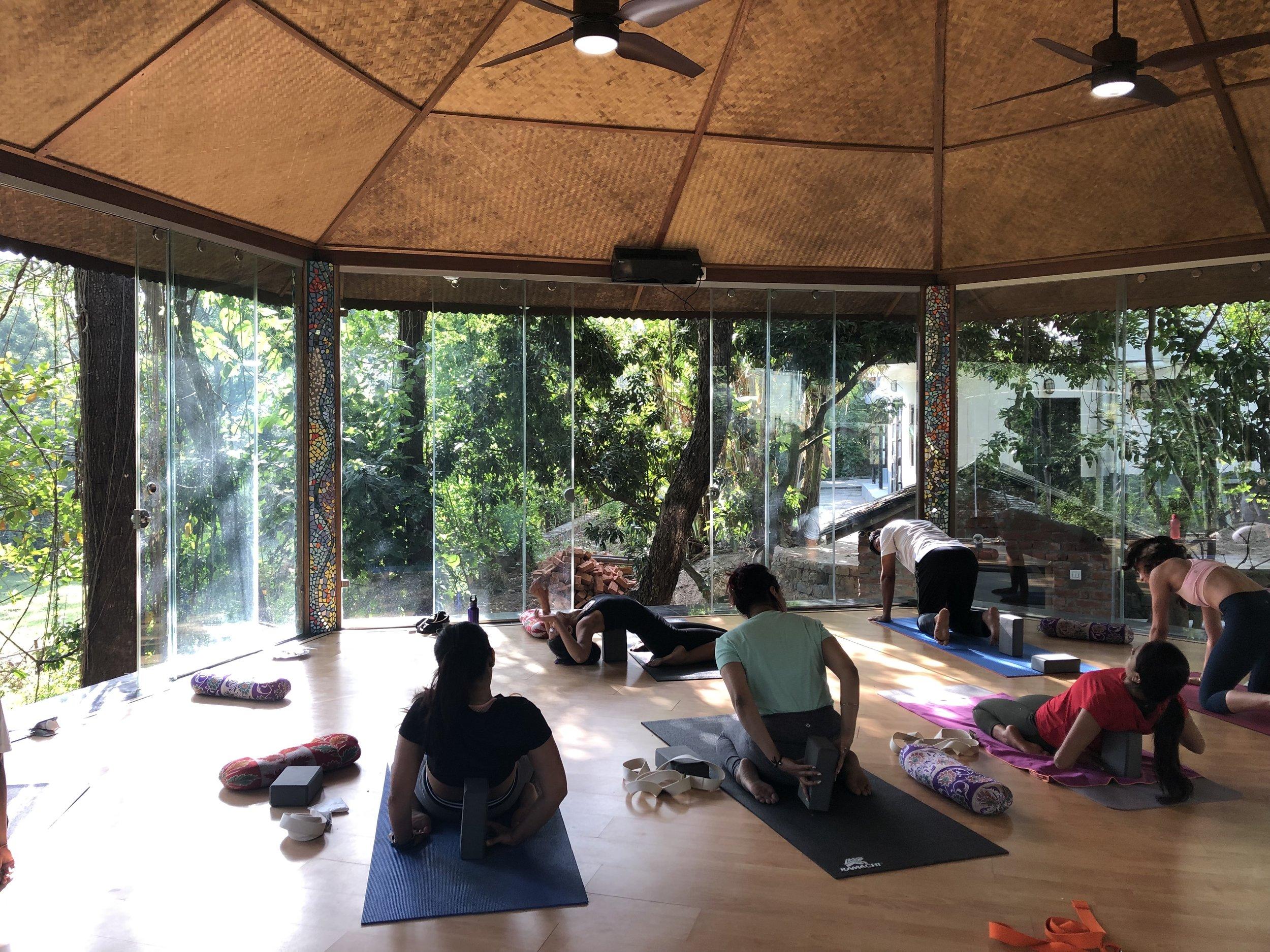 shraddha yoga (social post).jpg