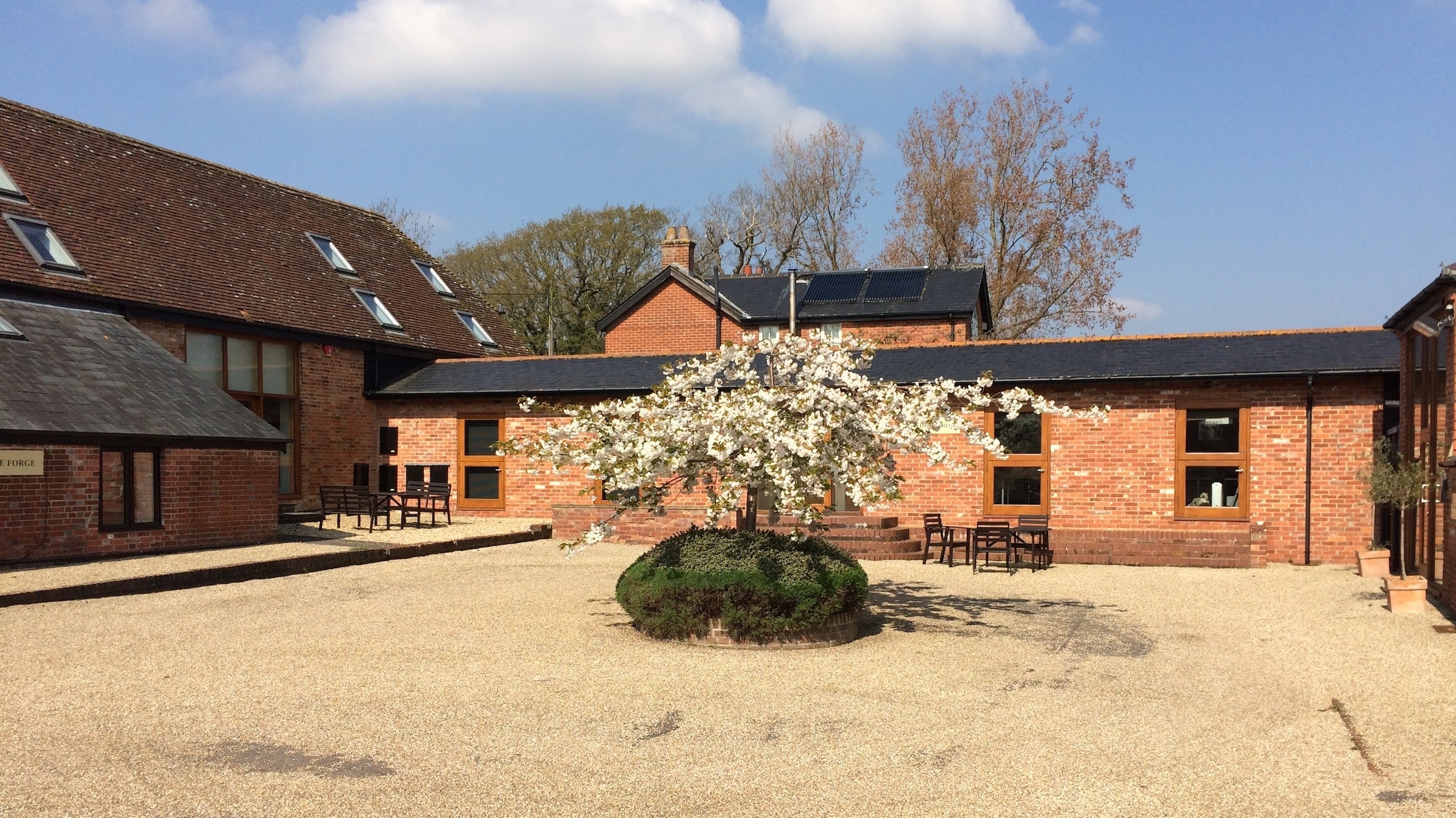 View of main barns at Efford Park with blossoming tree
