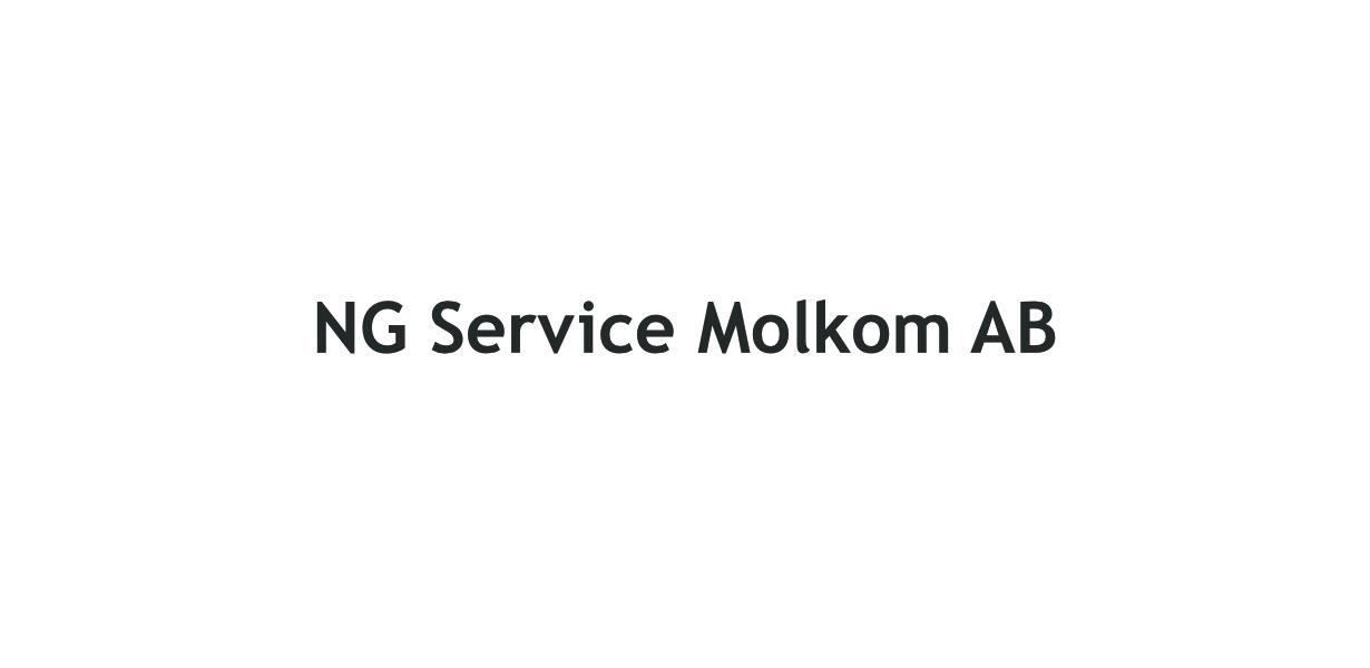 NG Service i Molkom