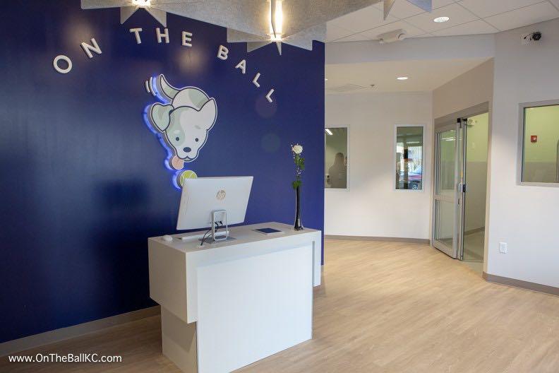 On the Ball - 1.jpg