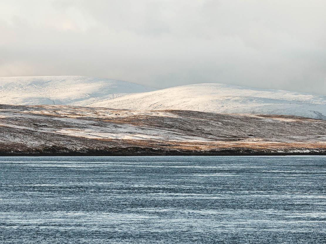 Tiles-2-Shetland-.jpg
