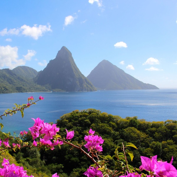 ST. LUCIA CRUISE - Join a family as it experiences lush, wondrous St. Lucia for the first time. From breathtaking rainforest waterfalls and white-sand beaches to the unmatched on-ship experience, Princess offers cruises to St. Lucia that are unlike any other. Watch this drone video showcasing a tropical St. Lucia vacation with Princess Cruises, then book a vacation of your own.