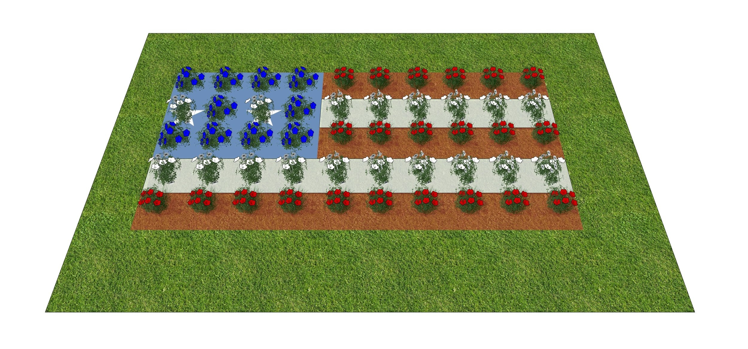 The Patriot Just Planted