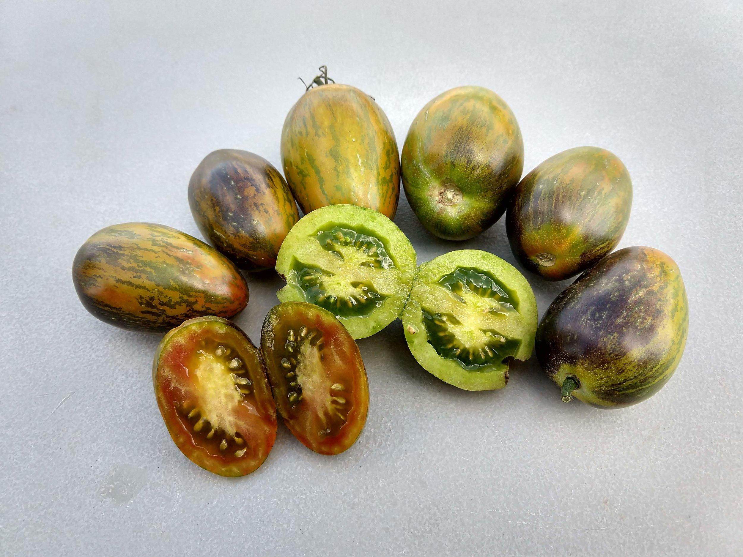 Larry Heidkamp - Tomato - Brads Atomic Grape.jpg