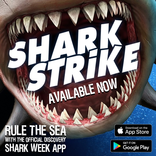 "SHARK WEEK: SHARK STRIKE - Life in this ocean is tough! To dive in and thrust into the open water, players must eat prey to survive and avoid the dangers of the sea. Make it far enough and you'll face your biggest challenge—the ""Boss"" orca himself!"