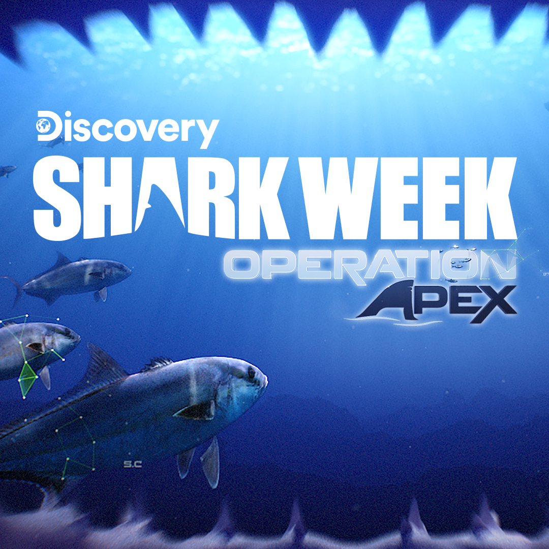 SHARK WEEK: OPERATION APEX - Use virtual reality to uncover the secrets of the big blue in an atmospheric deep sea dive. As you bear witness to an underwater marvel, your mission becomes clear.