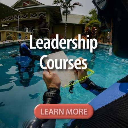 button_leadership_courses.jpg